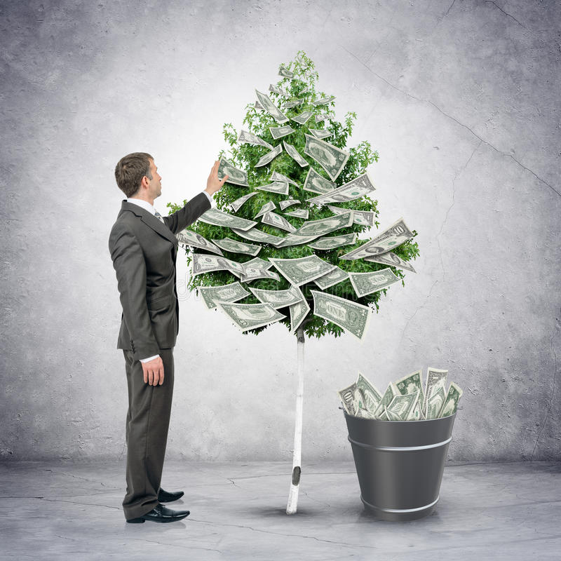 Businessman collecting money from tree stock photography