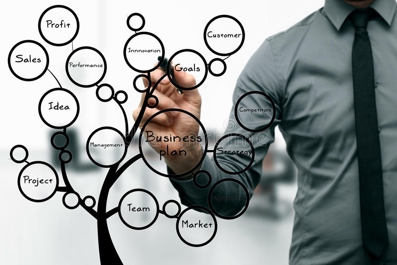 Businessman drawing business plan tree royalty free stock images