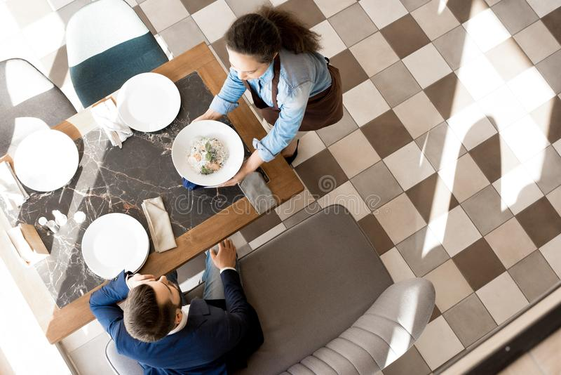 Businessman eating in fashionable restaurant. High angle view of curly-haired waitress in apron serving meal to businessman: she putting plate with salad on royalty free stock photos