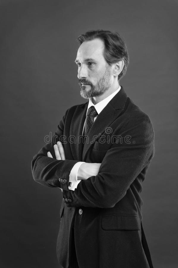 Businessman fashionable outfit. Attractive man wear suit. Perfect elegant tuxedo outfit. Fashion concept. Guy wear. Formal outfit. Masculinity and elegance royalty free stock image