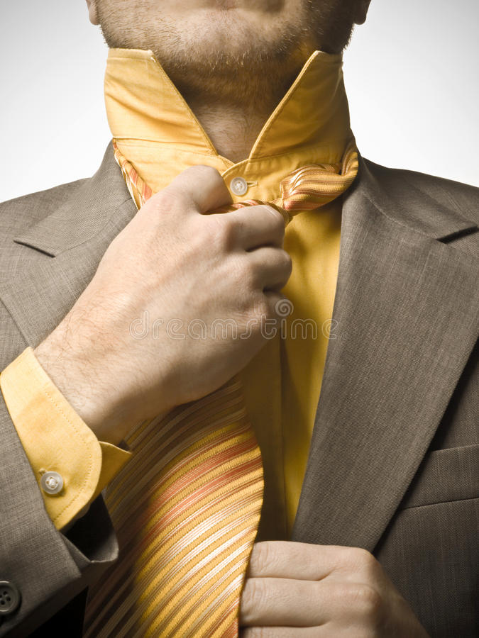 Businessman Fixing Tie royalty free stock photo