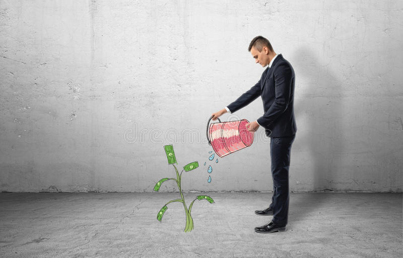 Businessman full-height in profile holding red bucket with water pouring out of it on money tree stock photos
