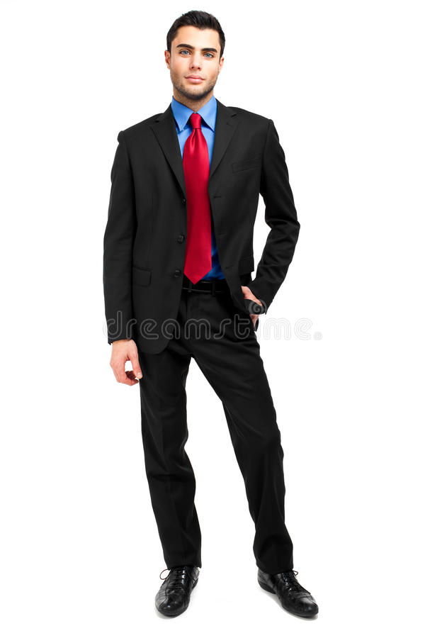 Download Businessman full length stock photo. Image of friendly - 28684712