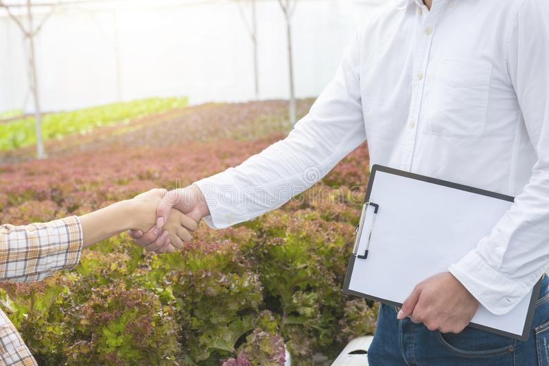 Businessman hand hold contract and asian woman farmer success deal contract in greenhouse hydroponic organic farm ,Small business stock photography