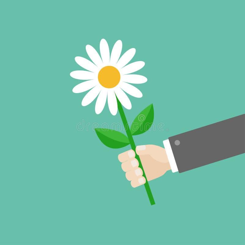 Businessman hand holding white daisy flower. Giving gift concept. stock illustration
