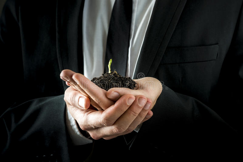 Businessman Hands Holding Soil with Young Sprout. Conceptual Businessman in Black Suit, Holding a Conceptual Soil with Fresh Young Sprout with his both Hands stock image