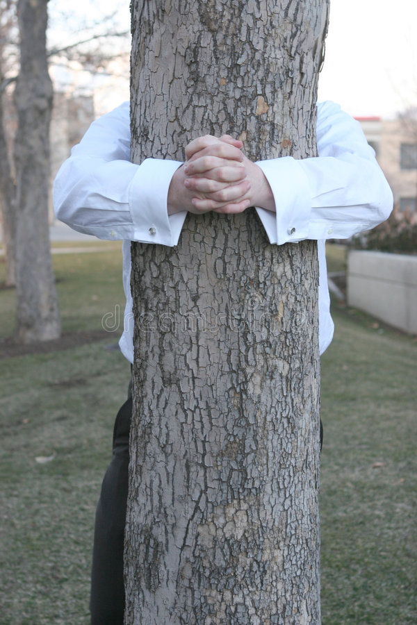 Businessman Hugging Tree Royalty Free Stock Photos
