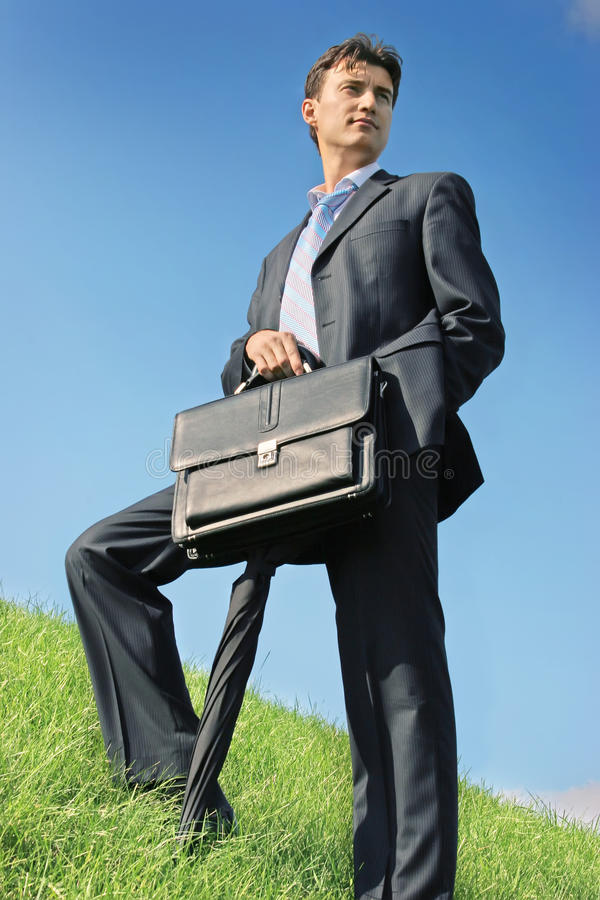 Businessman At The Meadow Royalty Free Stock Photography