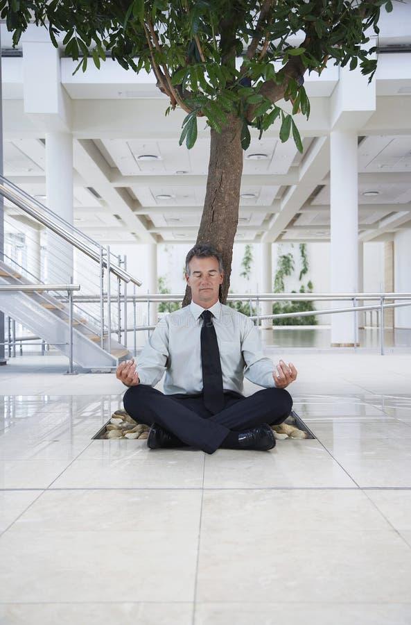 Businessman Meditating Under Tree. Full length of businessman meditating under tree in office building stock photography
