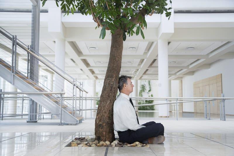 Businessman Meditating Under Tree In Office stock photos