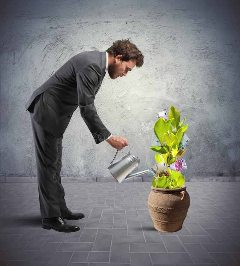Businessman with a plant of money stock image