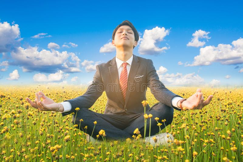 Businessman practice meditation in flower field royalty free stock images