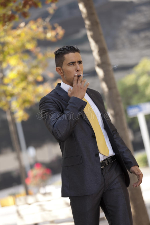 Download Businessman Smoking A Cigar Royalty Free Stock Image - Image: 28731716