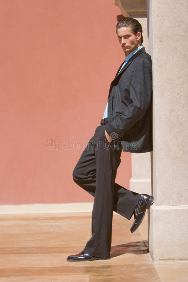 Download Businessman in suit stock image. Image of businessman - 3898819