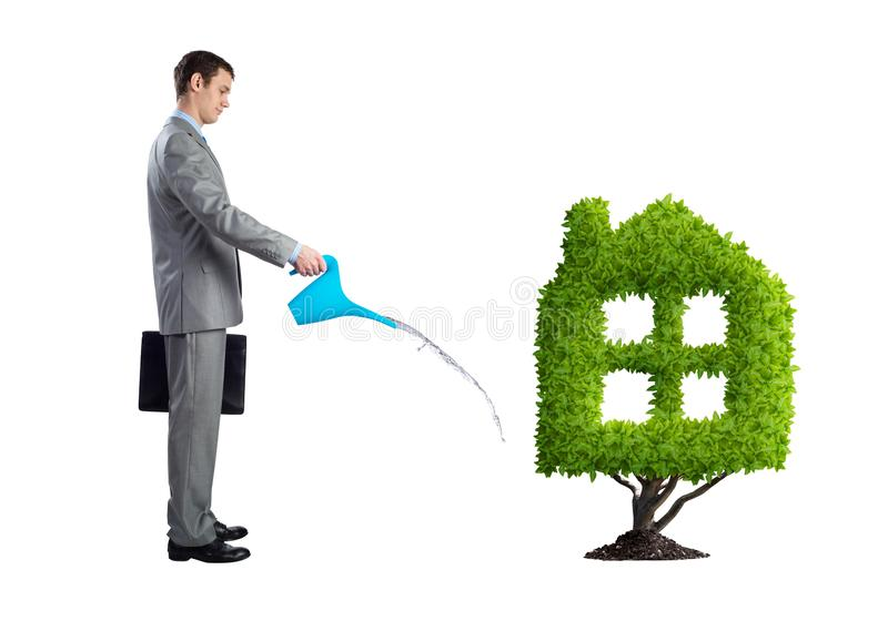 Businessman watering green plant in shape of house. Isolated on white background. Green and eco friendly technology. Business development to success. Real royalty free stock photo