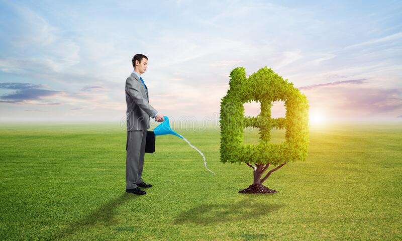 Businessman watering green plant in shape of house royalty free stock photos