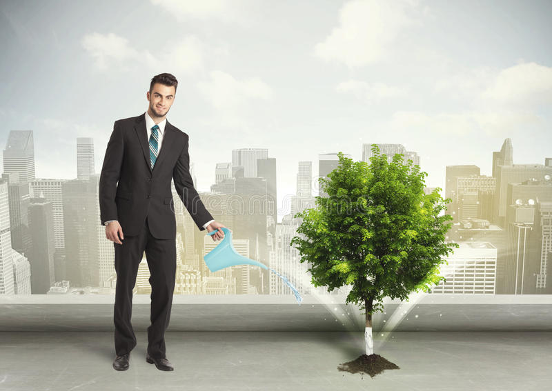 Businessman watering green tree on city background royalty free stock images