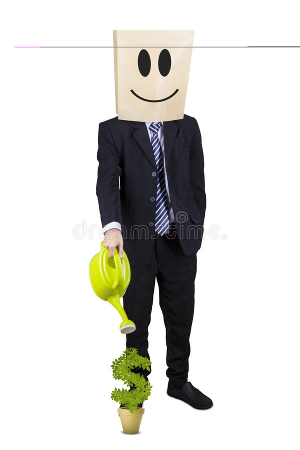 Businessman is watering money plant royalty free stock photography