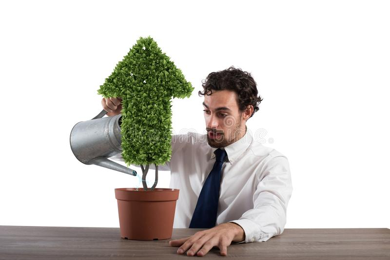 Businessman that watering a plant with a shape of arrow. Concept of growing of company economy . stock images