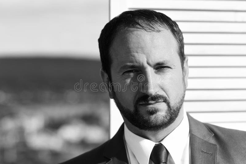 Businessman wears smart suit and tie on wooden wall royalty free stock photos