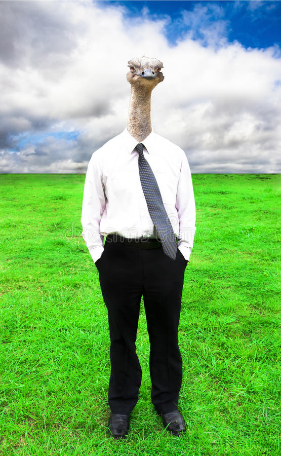 Free Businessman With Ostrich Head Stock Image - 14679221