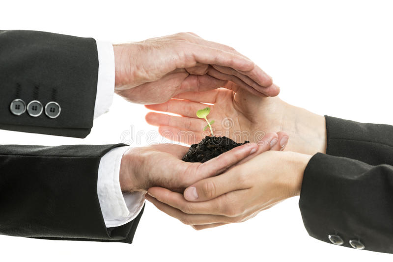 Businessman and woman protecting a seedling growing in fertile s. Oil in their cupped hands working together as a team in a conceptual image, suitable for stock photo