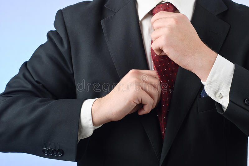 Businessman royalty free stock photos