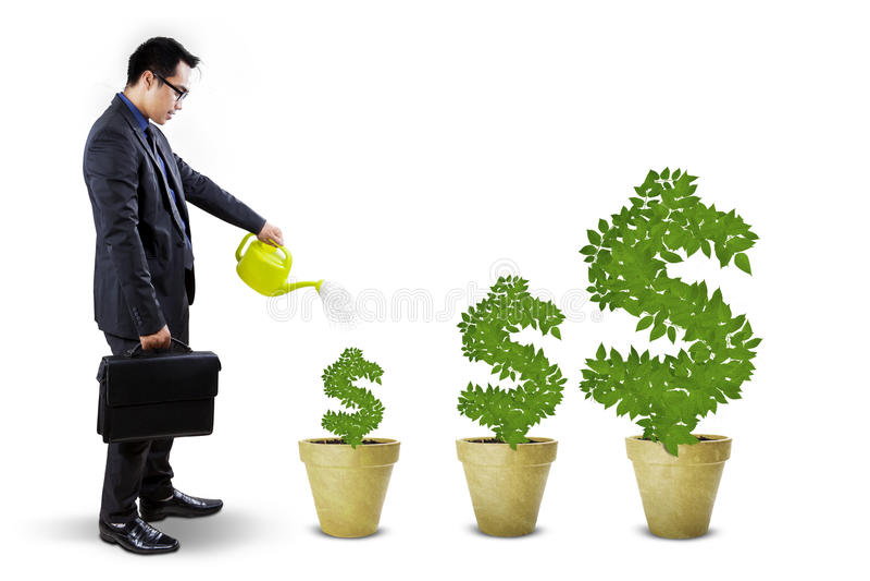 Businessperson voedt de geldbomen stock illustratie