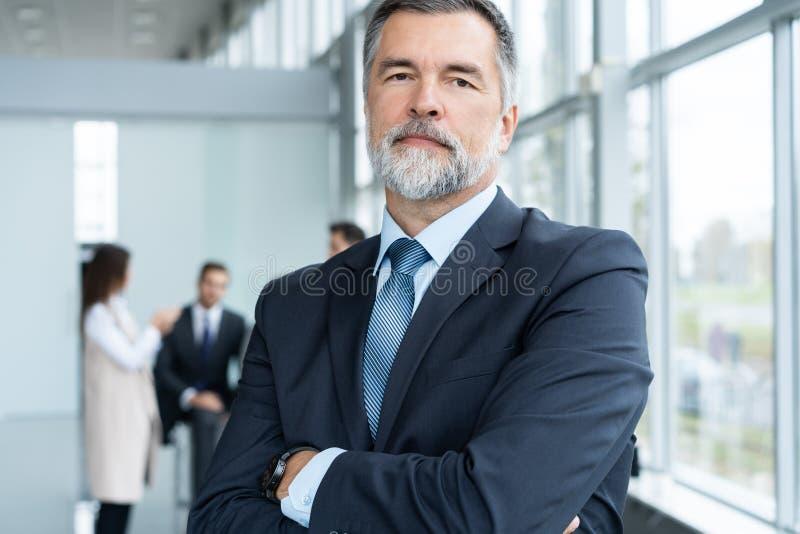 Businessteam i regeringsst?llning, den lyckliga h?ga aff?rsmannen i hans kontor st?r framme av deras lag royaltyfria foton