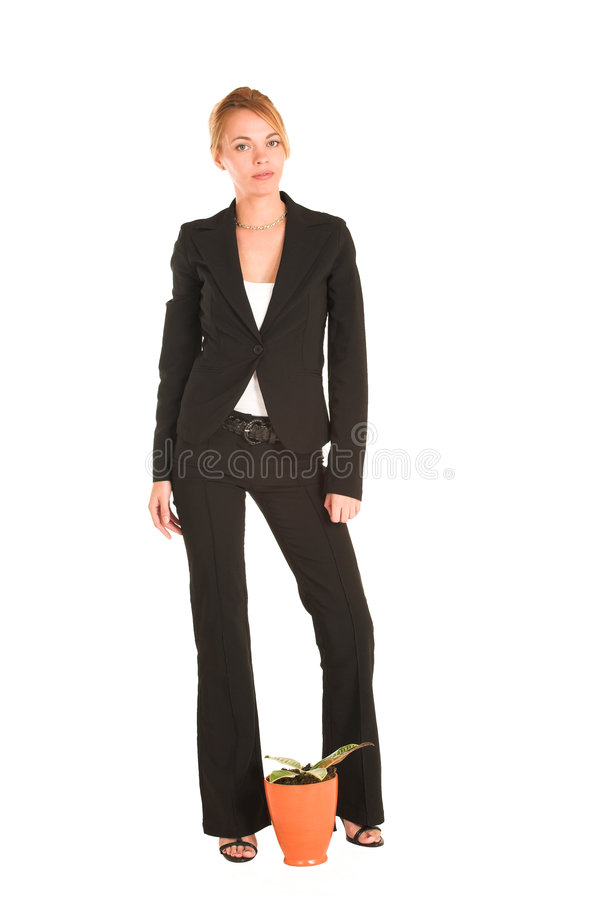 Free Businesswoman 239 Royalty Free Stock Image - 433736