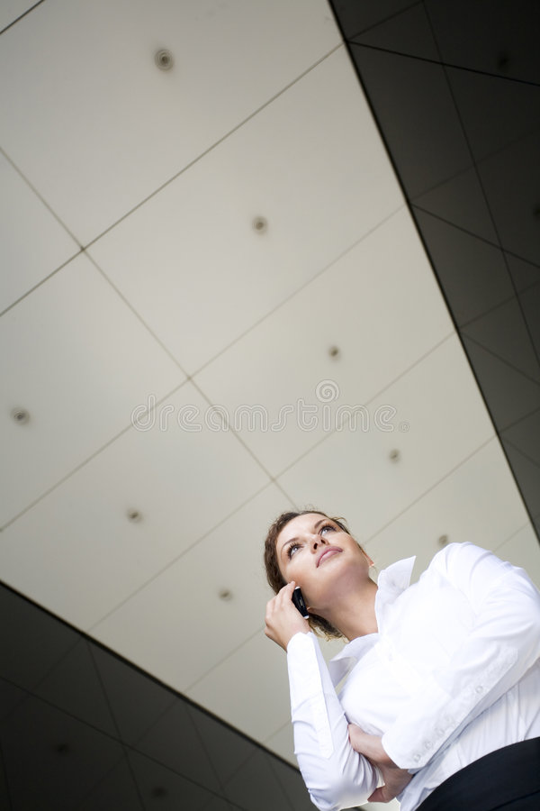 Download Businesswoman stock image. Image of business, standing - 6289079
