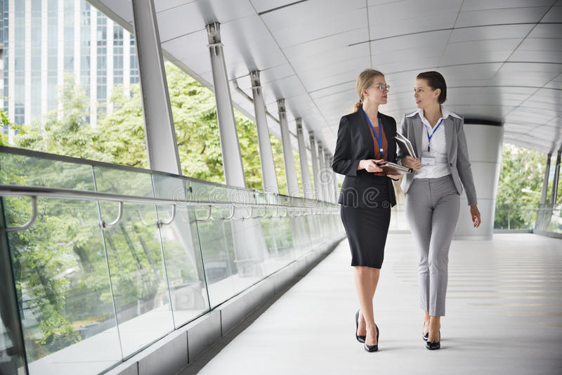 Businesswoman Corporate Colleagues Talking Concept stock photo