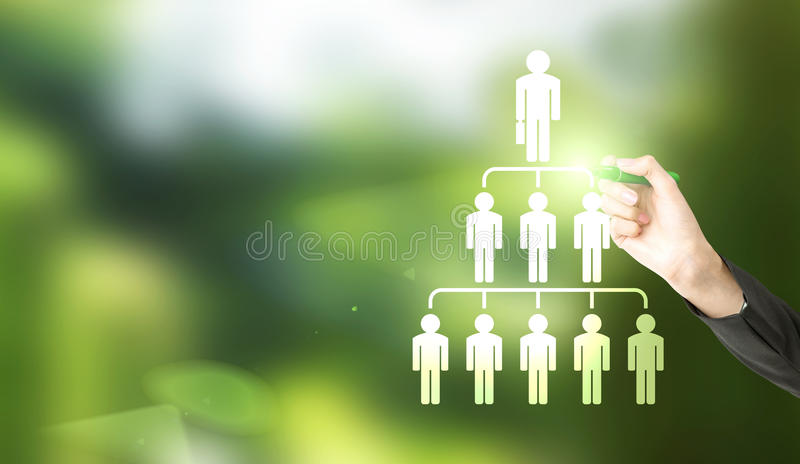 Businesswoman drawing hierarchy. Delegate concept with businesswoman hand drawing abstract employee hierarchy pictogram on green background royalty free stock image