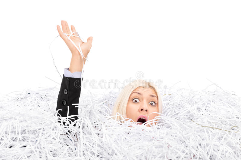 Businesswoman drowning in a pile of shredded paper stock photo download businesswoman drowning in a pile of shredded paper stock photo image of businesswoman publicscrutiny Images