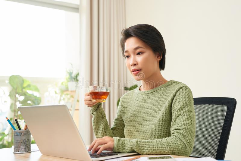 Businesswoman having a cup of coffee while using her laptop stock photo