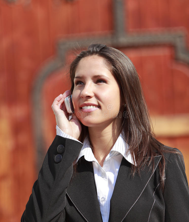Download Businesswoman on the phone stock image. Image of caucasian - 10904563