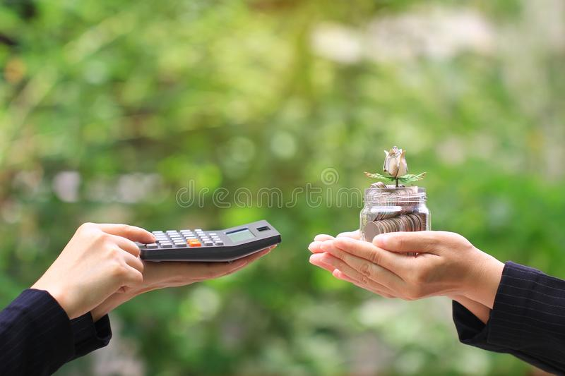 Businesswoman using a calculator and holding flower make from banknote on coins money in glass bottle on green background, stock image