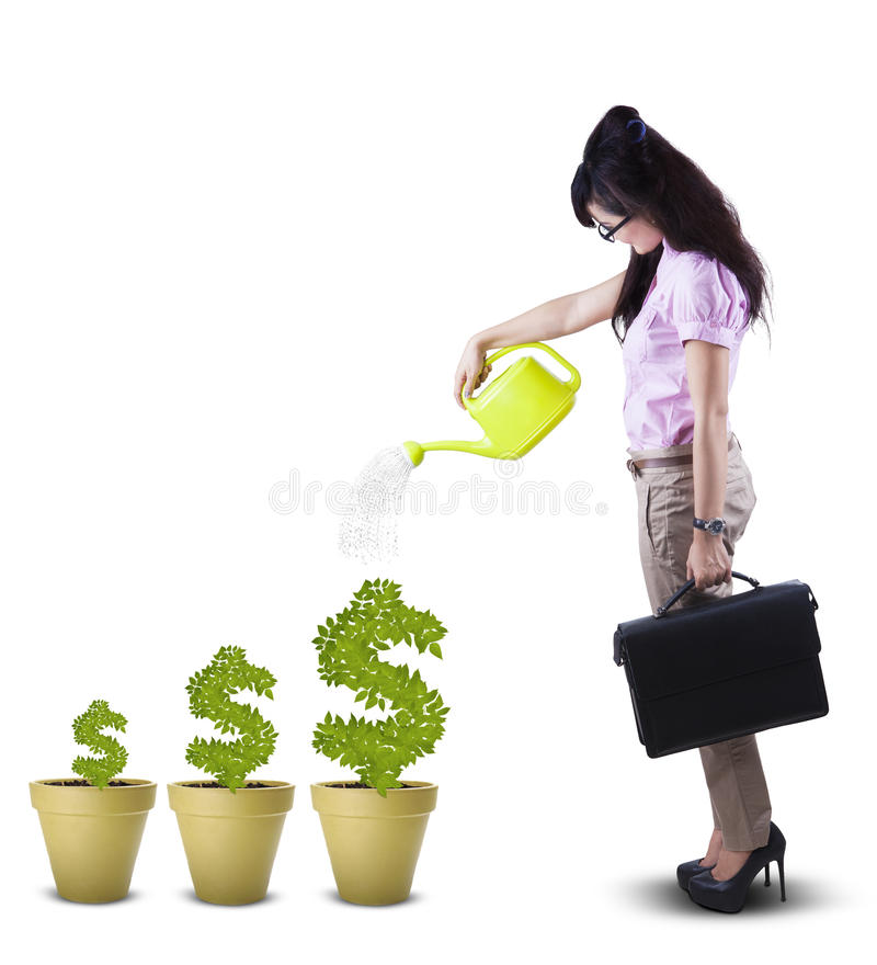 Businesswoman watering plant in pot isolated stock images