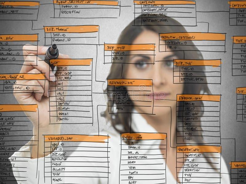 Database software development stock image