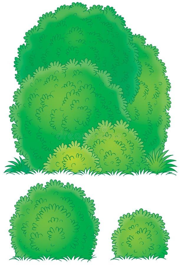 buskar royaltyfri illustrationer