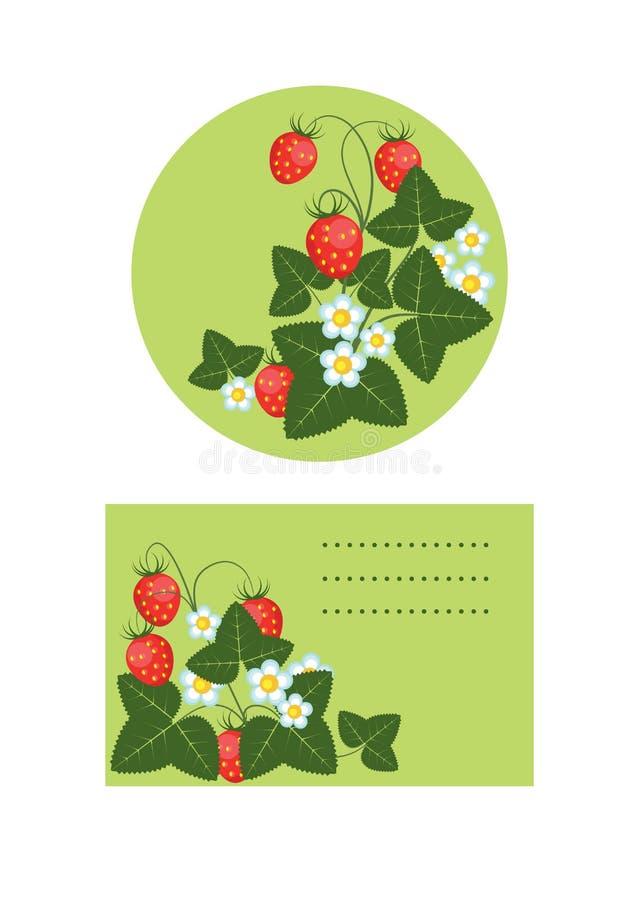 Buskar av jordgubbar, etikettmallar stock illustrationer