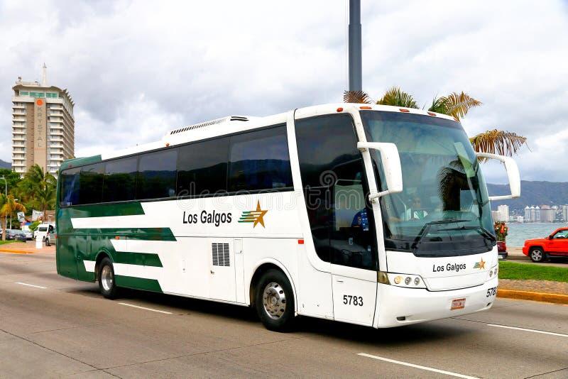 Busscar Vissta Buss olá! fotos de stock royalty free