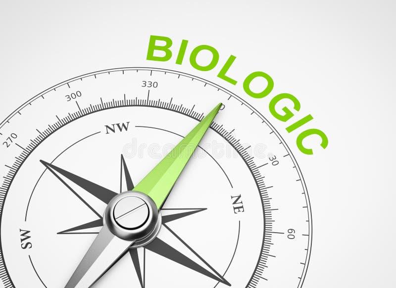 Bussola su fondo bianco, concetto biologico illustrazione di stock