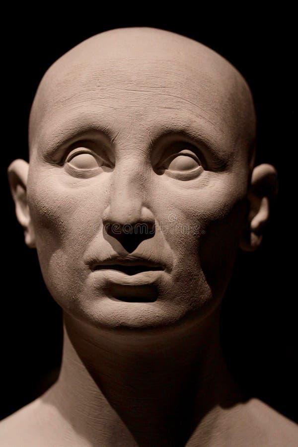 Human head model. A bust of a generic caucasian human head royalty free stock photos