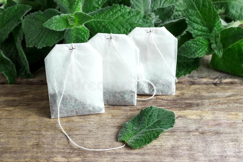 Bustine di tè bianche con le foglie di menta fotografia stock libera da diritti