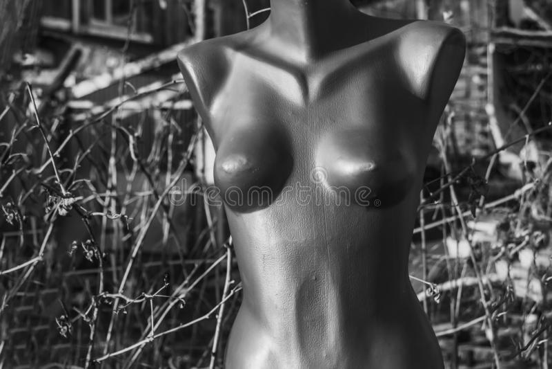 Busto cinzento plástico de um manequim despido da mulher na rua foto de stock royalty free