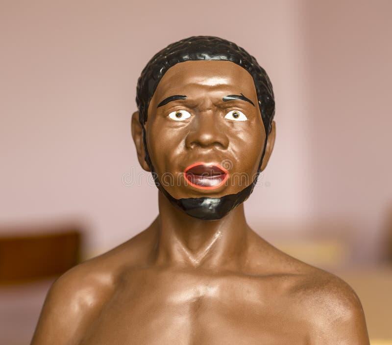 busto de um africano a estudar na escola e na faculdade dentro no estudo da biologia Petropavlovsk-Kanchatsky imagens de stock royalty free