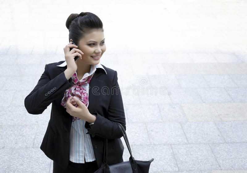 Download Busy BusinessWoman stock photo. Image of desk, diary - 24231186