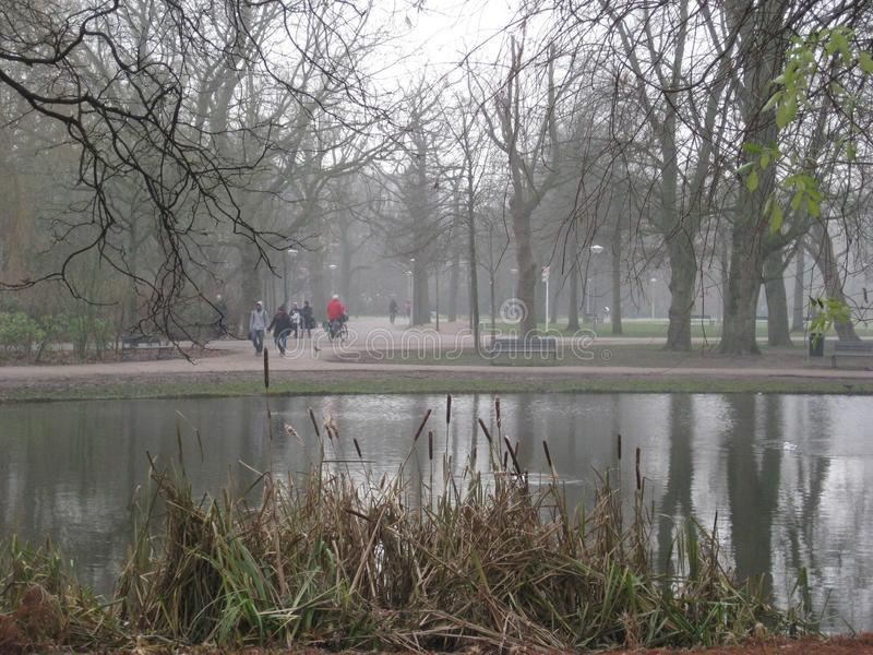 A busy day in in the Vondelpark, Amsterdam royalty free stock photo