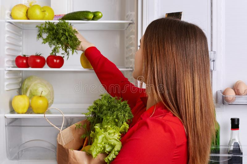 Busy housewife puts fresh vegetables she just bought on shelf of refrigerator, dressed in red blouse, poses at kitchen. Lovely wom royalty free stock photography
